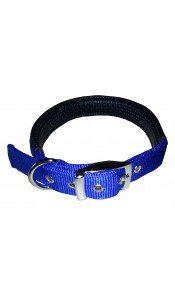 Blue Padded Dog Collar