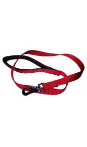 Red Padded Nylon Dog Lead